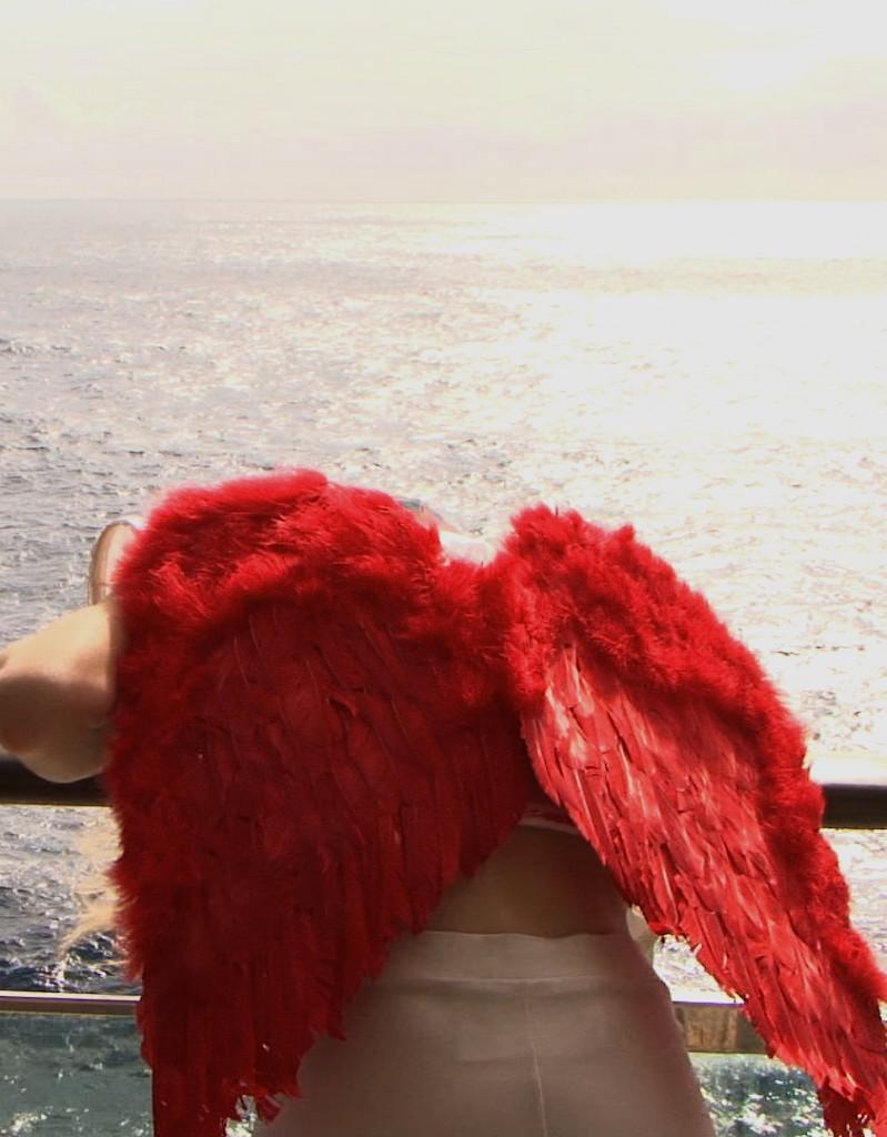 La Nef des Fous - le bateau des poètes et autres malades mentaux -