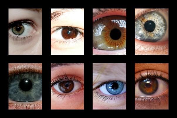 yeux-tt-width-604-height-403